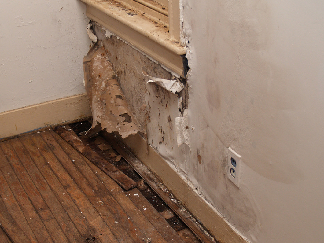 Explore the benefits of our water damage restoration services